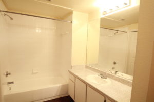1323 Bathroom 2